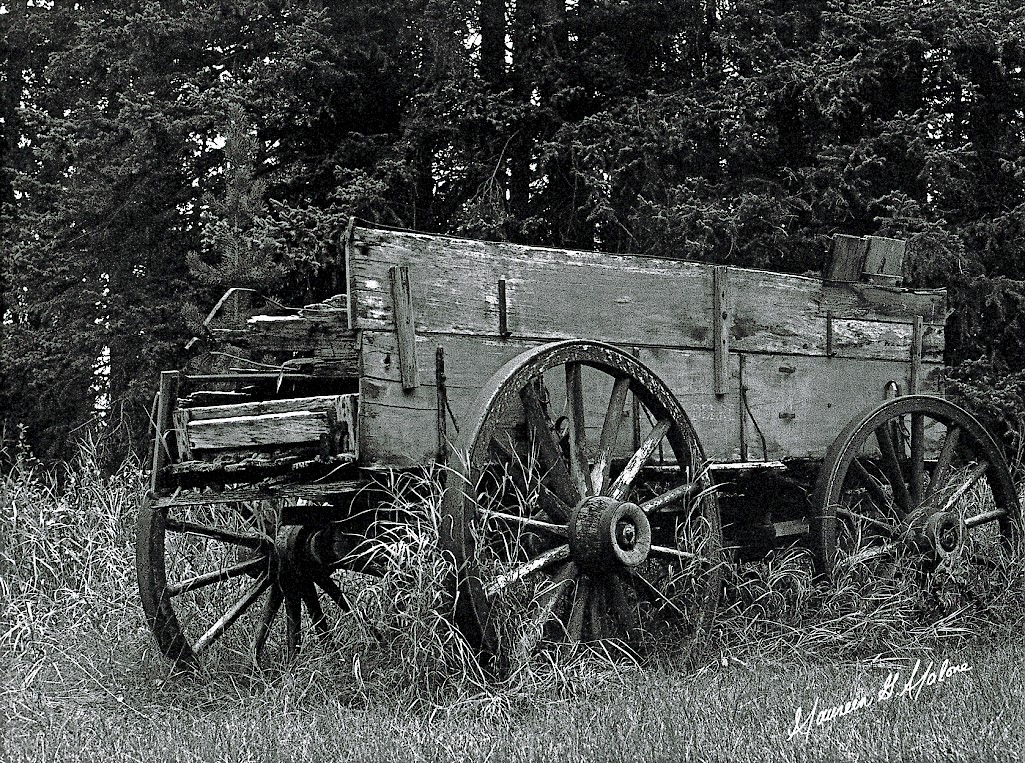 Bragg Creek Wagon